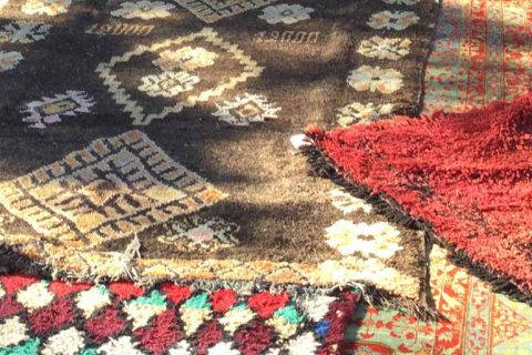 A Passion for Rugs | Christiane Millinger - The Ruggist
