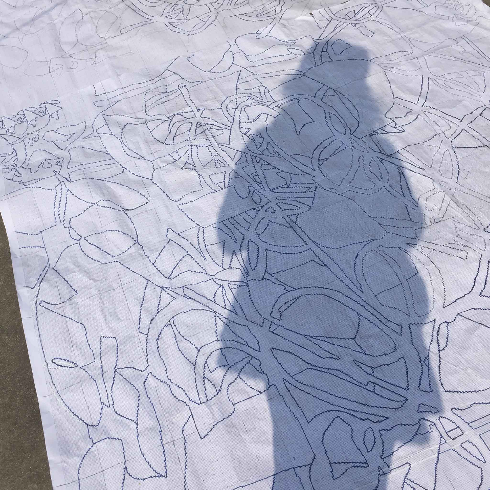 'Ghost in the Machine' - Amy Helfand posses in a 'selfie' while inspecting a graph in Nepal in early 2016. | Image courtesy of Amy Helfand.